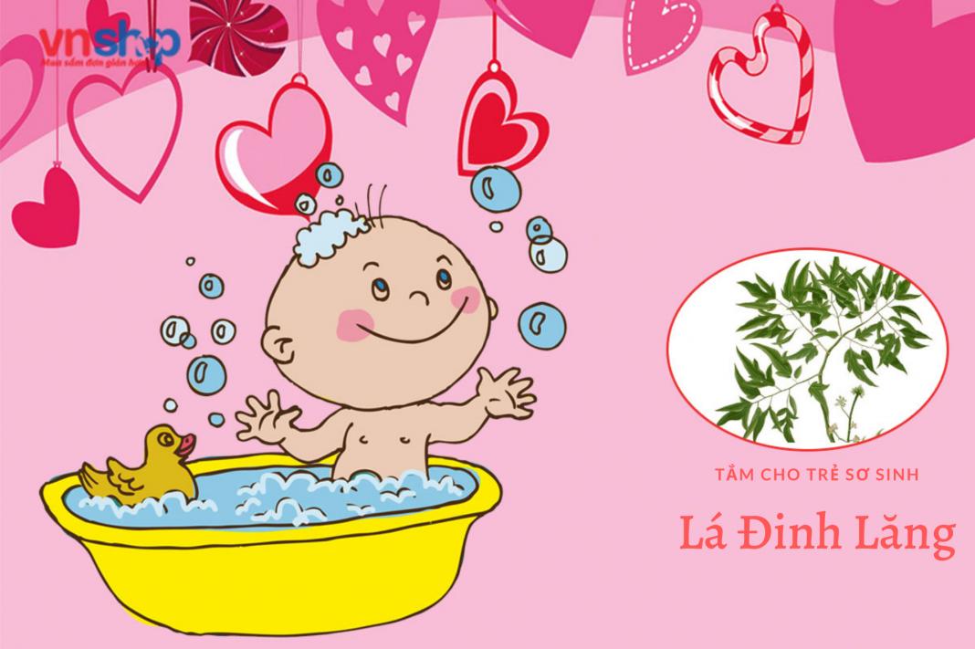 Hướng dẫn cách tắm lá đinh lăng cho trẻ sơ sinh