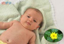 Cách tắm lá sài đất cho trẻ sơ sinh
