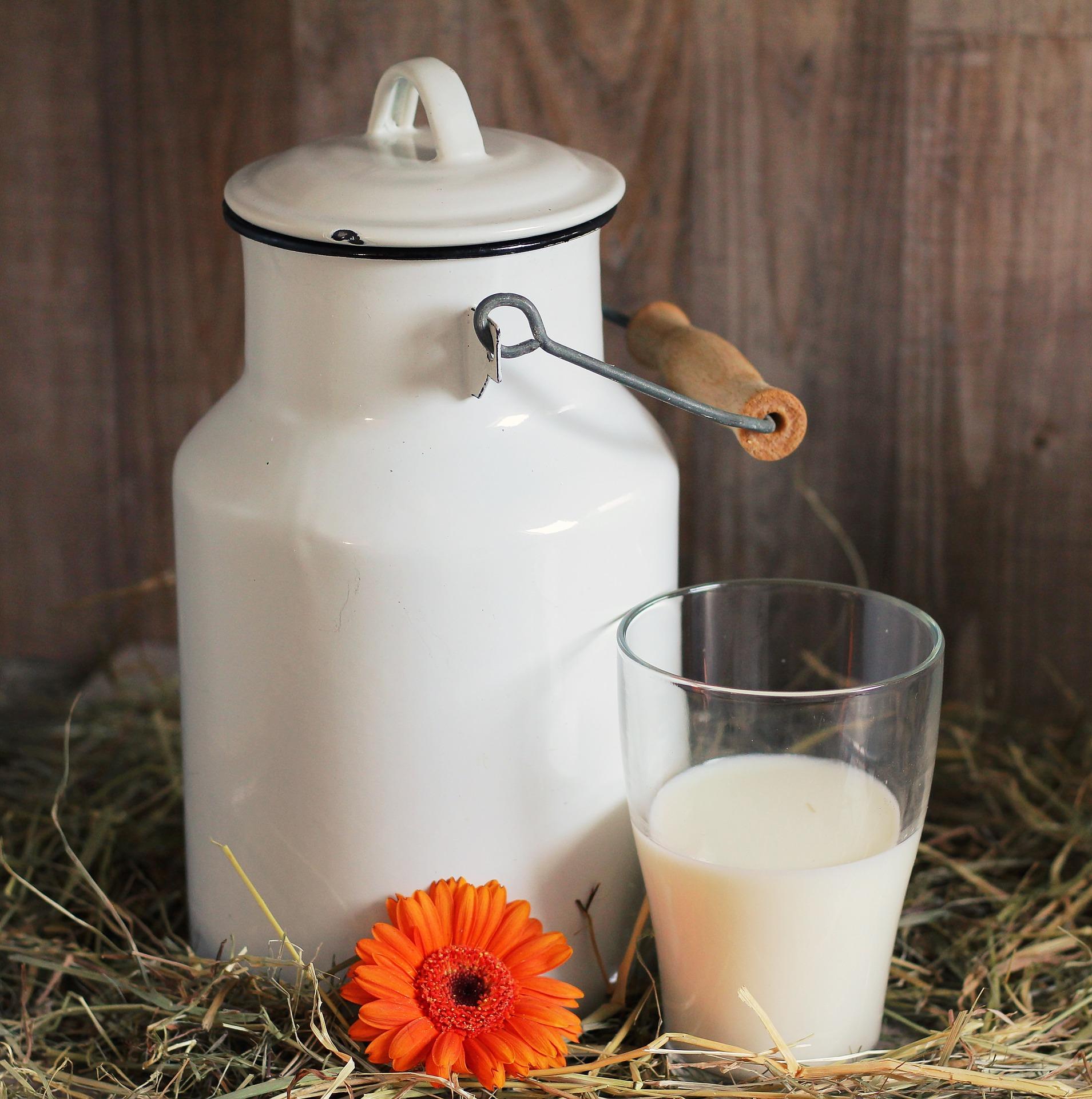 Sữa chua không đường tốt như thế nào?