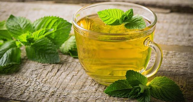 trà bạc hà á giải nhiệt trị mụn mùa hè