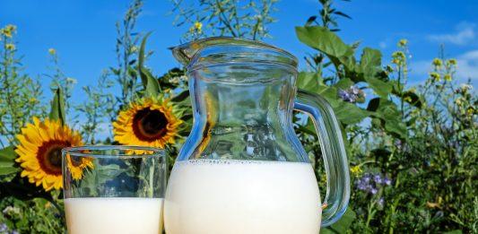 Sữa tươi không đường giảm cân