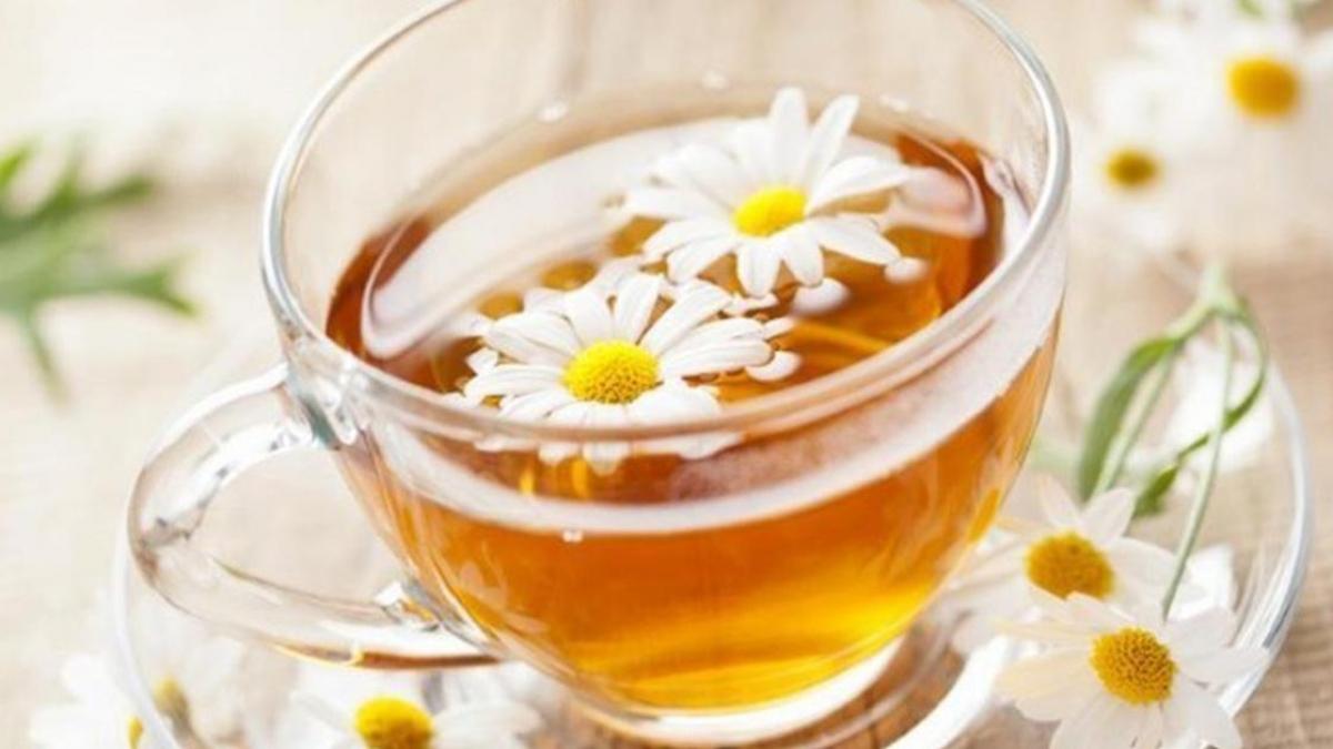 trà thanh nhiệt giải độc - trà hoa cúc