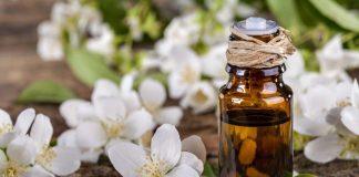 jasmine oil tinh dầu hoa nhài là gì